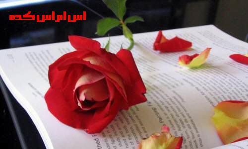 http://www.smskade.ir/wp-content/uploads/2015/01/matn-va-sms-del-neveshte-ziba-day93.jpg