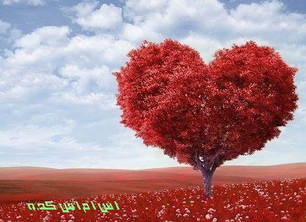 http://www.smskade.ir/wp-content/uploads/2015/02/matn-va-Sms_Love-s93.jpg